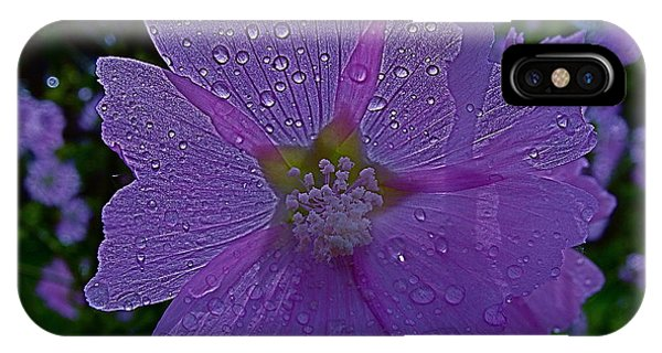 Flower After Rain IPhone Case
