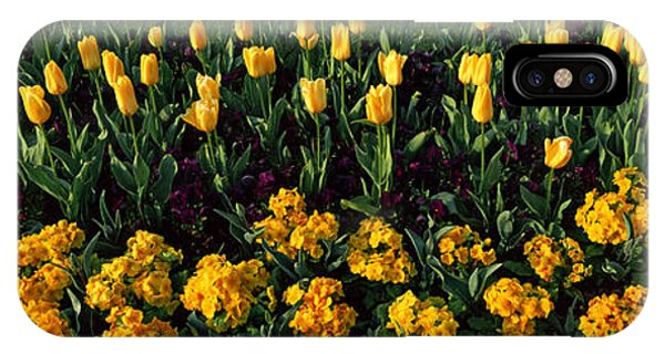Flowers In Hyde Park, City IPhone Case