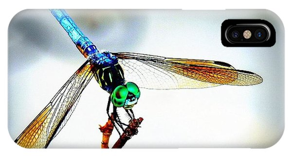 Fly Dragon IPhone Case