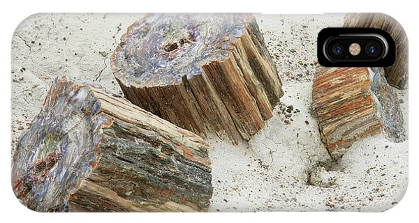 Fossilised Trees In Petrified Forest National Park Phone Case by Simon Fraser/science Photo Library