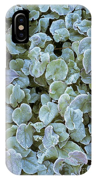 Frost On Epimedium Leaves. Phone Case by Geoff Kidd