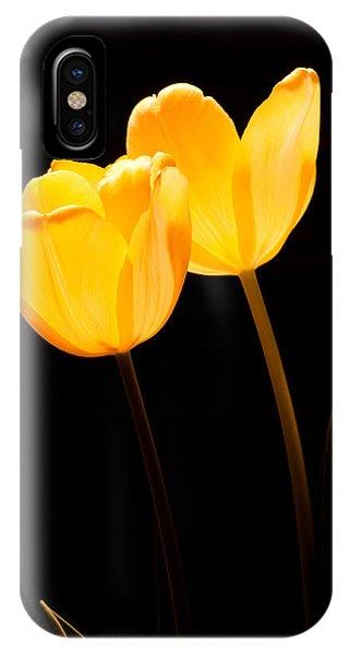Glowing Tulips II IPhone Case
