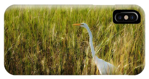 Wakulla iPhone Case - Great Egret In The Morning Dew by Rich Leighton