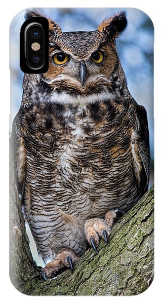 Avian iPhone Case - Great Horned Owl by Dale Kincaid