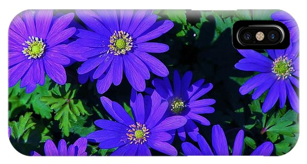 Grecian Wildflowers IPhone Case