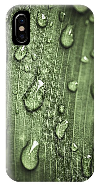 Plants iPhone Case - Green Leaf Abstract With Raindrops by Elena Elisseeva