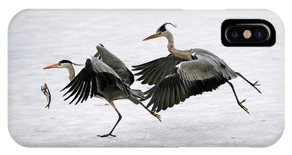 Behaviour iPhone Case - Grey Herons Fighting Over A Fish by Bildagentur-online/mcphoto-schulz
