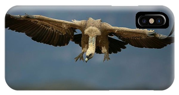 Griffon iPhone Case - Griffon Vulture Flying by Nicolas Reusens