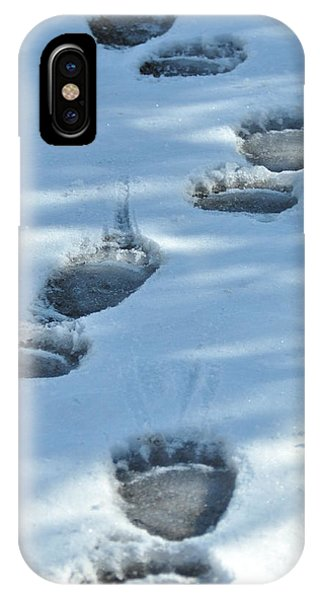 Grizzly Bear Tracks IPhone Case