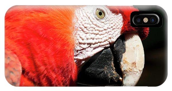 Scarlet iPhone Case - Guatemala, Chichicastenango by Michael Defreitas