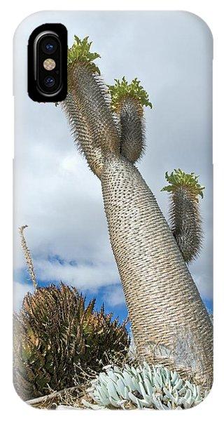 Halfmens Tree IPhone Case