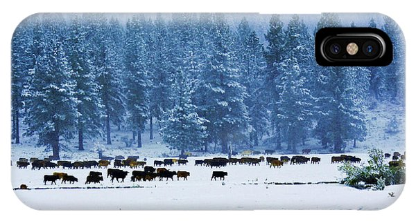 Hard Grazing IPhone Case