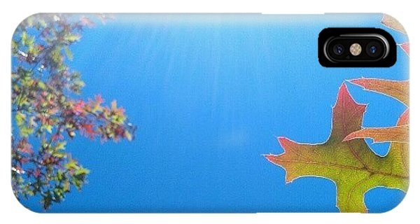 Orange iPhone Case - Hello Autumn by CML Brown