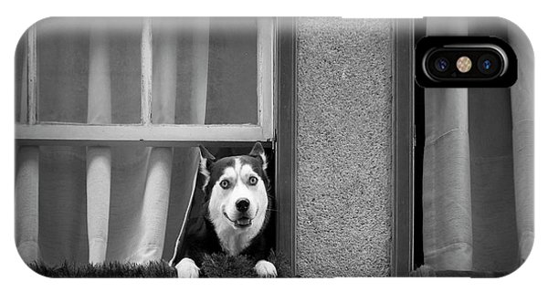 Prairie Dog iPhone Case - Hello!! by Fernando Jorge Gon?alves