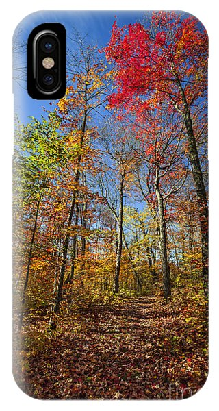 Hiking Trail In Fall Forest IPhone Case