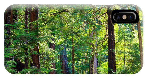 Hoh Rain Forest IPhone Case