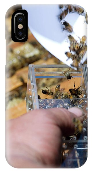 Honeybee iPhone X Case - Honeybee Shipment by Louise Murray/science Photo Library