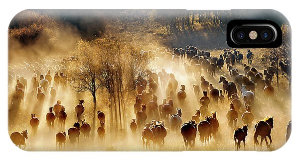 Dust iPhone Case - Horses by Hua Zhu