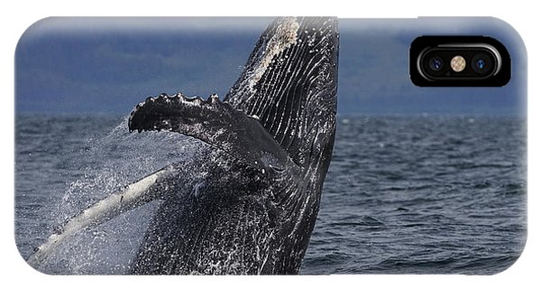 Whales iPhone Case - Humpback Whale Breaching Prince William by Hiroya Minakuchi