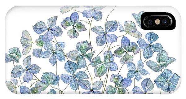 Flower Gardens iPhone Case - Hydrangea by Mandy Disher