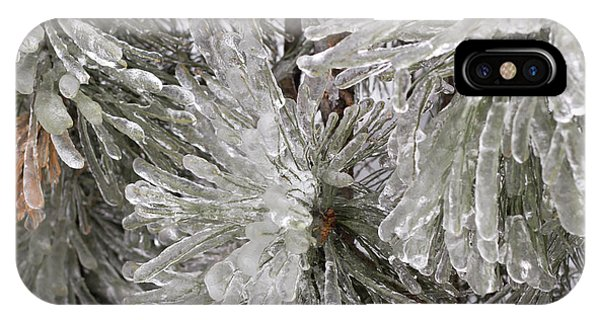 Ice On Pine Branches IPhone Case