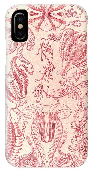 Illustration Shows Comb Jellies. Ctenophorae Phone Case by Artokoloro
