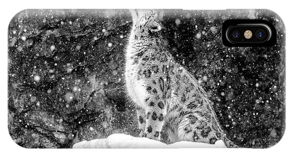 Snowy iPhone Case - It's Snowing by David Williams