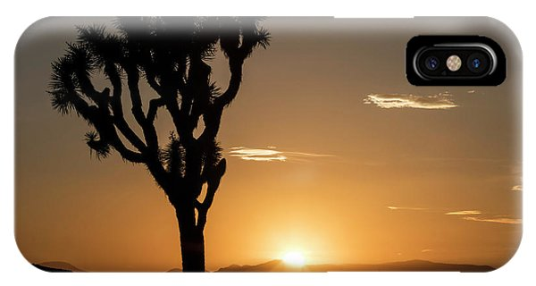 Adapted iPhone Case - Joshua Tree (yucca Brevifolia) At Sunset by Michael Szoenyi