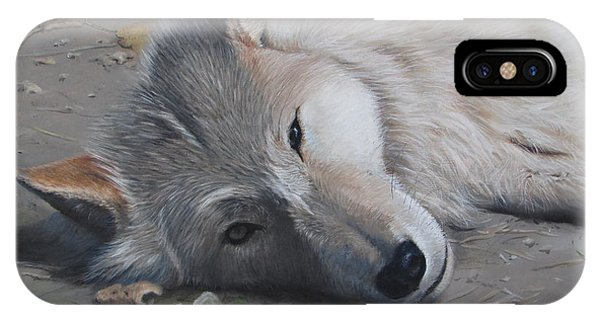 IPhone Case featuring the painting Just A Little Break by Tammy Taylor