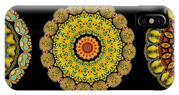 Kaleidoscope Ernst Haeckl Sea Life Series Triptych IPhone Case