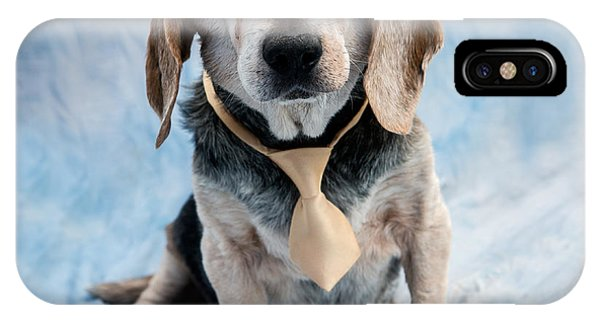 Kippy Beagle Senior And Best Dog Ever IPhone Case