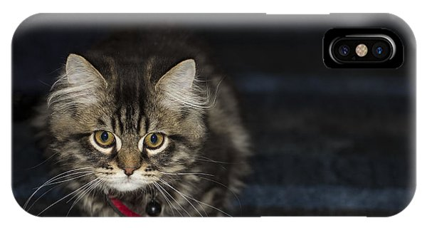 Kitty Phone Case by Sanjeewa Marasinghe