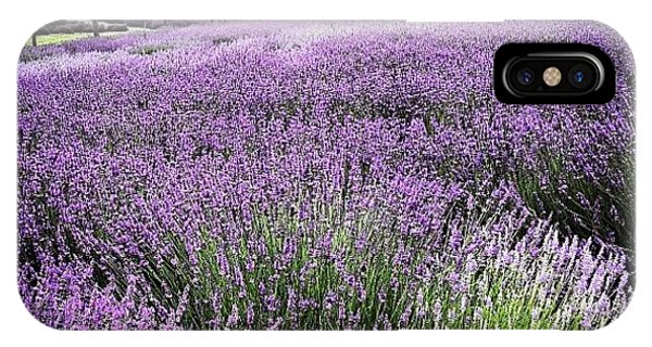 Florals iPhone Case - Lavender Farm Landscape by Christy Beckwith