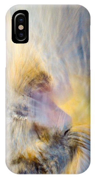Leibert 6 IPhone Case