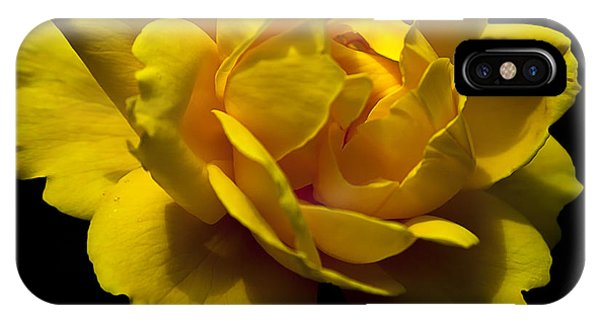 IPhone Case featuring the photograph Lemon Rose by David Millenheft