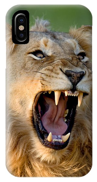 Open iPhone Case - Lion by Johan Swanepoel
