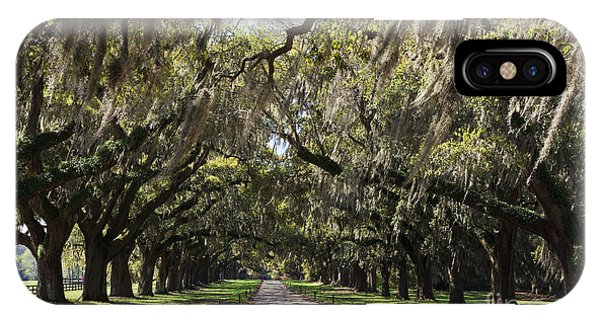 Live Oaks IPhone Case