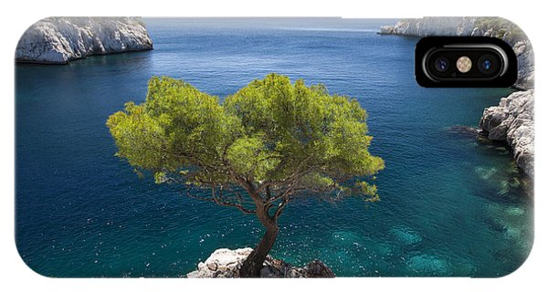IPhone Case featuring the photograph Lone Pine Tree by Brian Jannsen
