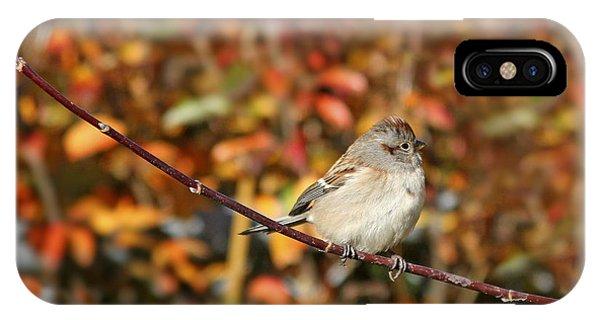 Lone Sparrow IPhone Case