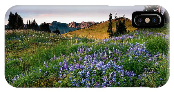 Alpine Meadows iPhone Case - Lupine Sunrise by Mike Dawson
