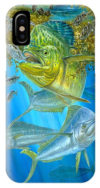 Mahi Mahi Hunting In Sargassum IPhone Case