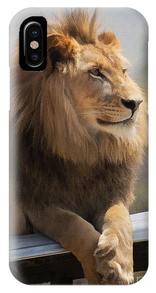 Lions iPhone Case - Majestic Lion by Sharon Foster