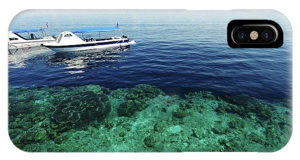 Alive iPhone Case - Malaysia, Borneo, Semporna Archipelago by Anthony Asael