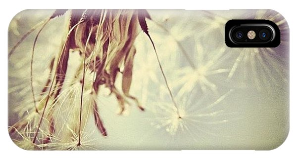 Sky iPhone Case - #mgmarts #dandelion #makeawish #wish by Marianna Mills