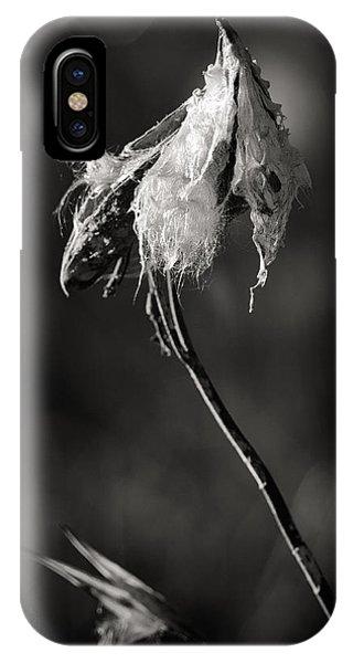 Milkweed Pod IPhone Case