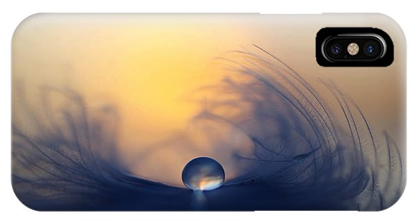 Feathers iPhone Case - Morning by Peep Loorits