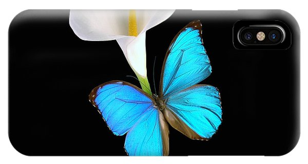 Morpho On Calla IPhone Case