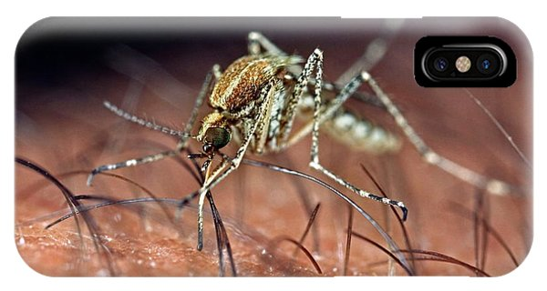 Behaviour iPhone Case - Mosquito Biting Hand by Frank Fox