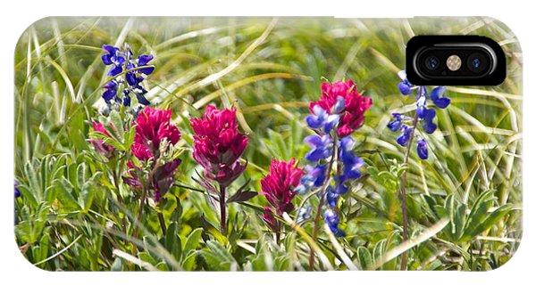 Scarlet Paintbrush iPhone Case - Mount Rainier Wildflowers by Sean Griffin