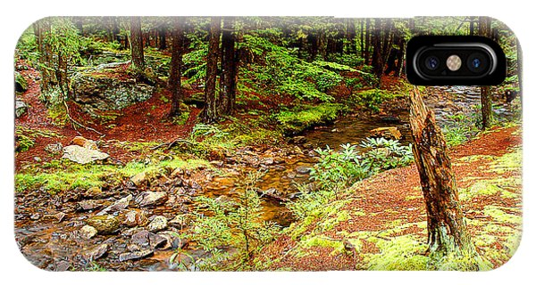 Mountain Stream With Hemlock Tree Stump IPhone Case